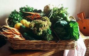 Z zelenjavo do boljšega delovanja možganov?