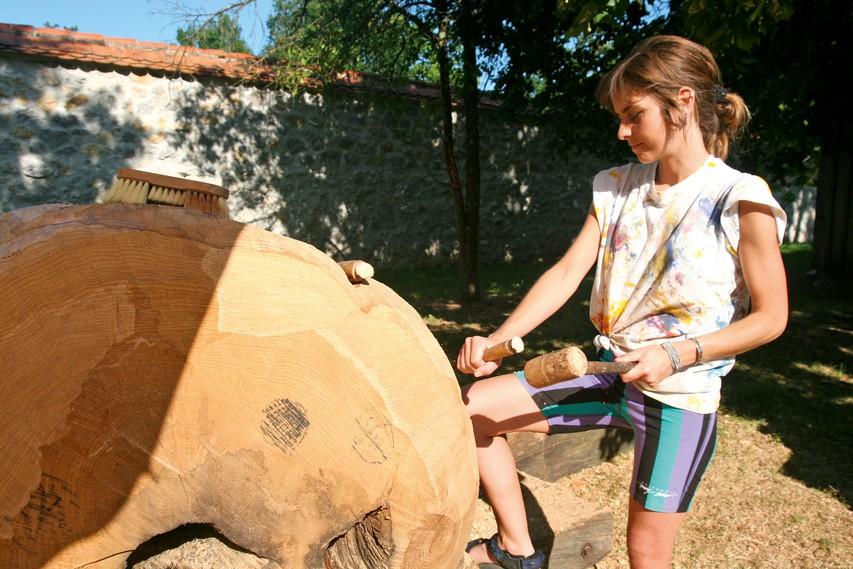 Forma viva, mednarodno srečanje kiparjev, ki ustvarjajo v hrastovem lesu.