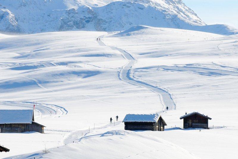 Alpe di Suisi/Seiser Alm, Italja