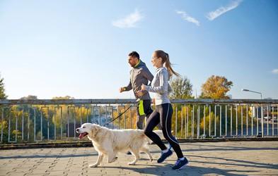 Nasveti za tek s psom: Kdaj je pravi čas, katere pasme so primerne, kje se skrivajo pasti ...
