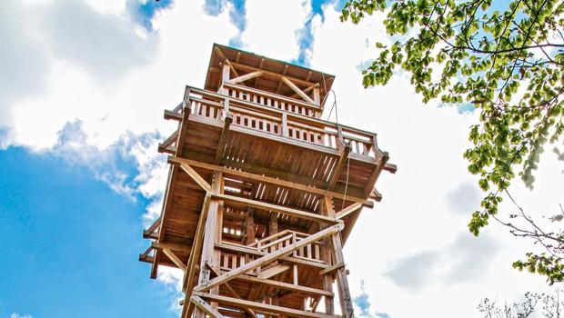 Ideja za izlet: Do stolpa  ljubezni na Žusmu (foto: PD Žusem)