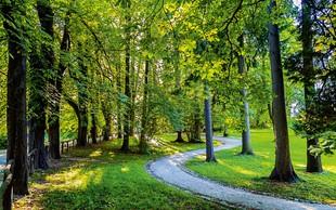 Zeleni turizem v Sloveniji
