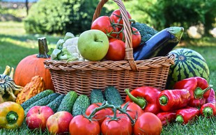 Zdravilnost sadja in zelenjave