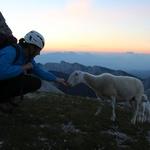 Navdihujoča zgodba: kako so slepi in slabovidni dijaki osvojili Triglav (foto: Matevž Hribar)