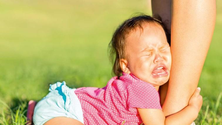 6 malih vedenjskih težav, ki jih ne smete ignorirati (foto: Shutterstock)