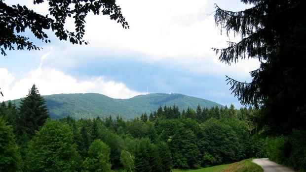Ideja za izlet: Na Gorjance (foto: Wikipedia)