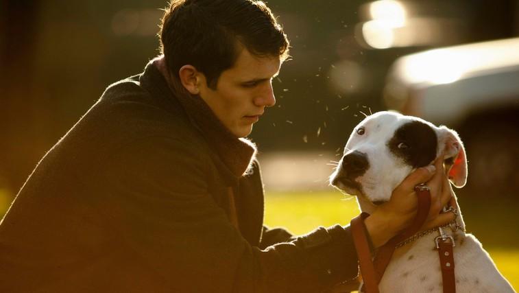 Zakaj vas štirinožni prijatelji naredijo srečnejše? (foto: Profimedia)