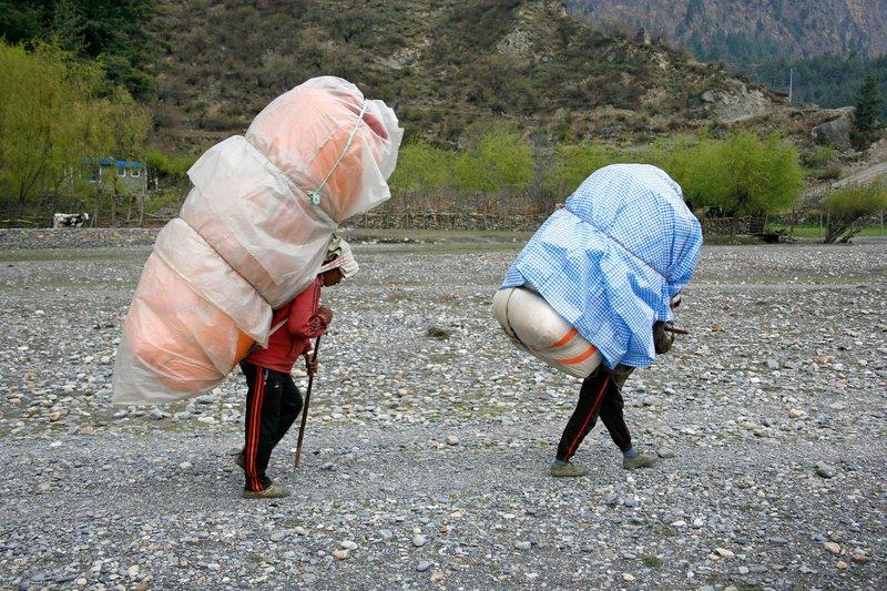 Nosači, Nepal