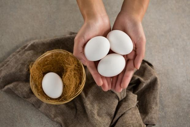 Dan začnite z beljakovinami Te bodo podobno kot vlaknine zadovoljile željo po lakoti in odpravile nezdrave odločitve. Prav tako je …