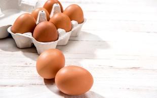 Jajca – priljubljena hrana ljudi