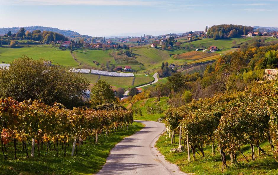 Ideja za izlet: Po Sromeljski pešpoti vina in sonca (foto: Jošt Gantar)