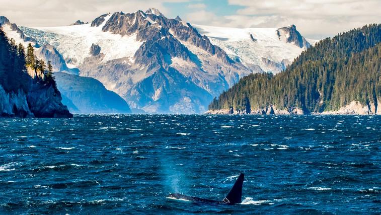 Najlepši fjordi - oglejte si jih! (foto: shutterstock)