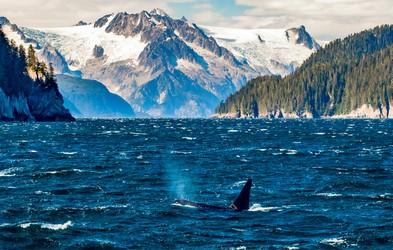 Najlepši fjordi - oglejte si jih!
