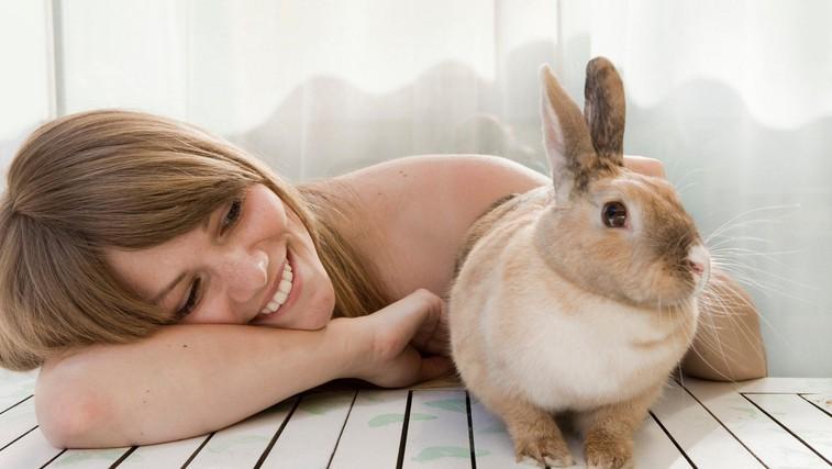Tako koristne so lahko domače živali (foto: Profimedia)