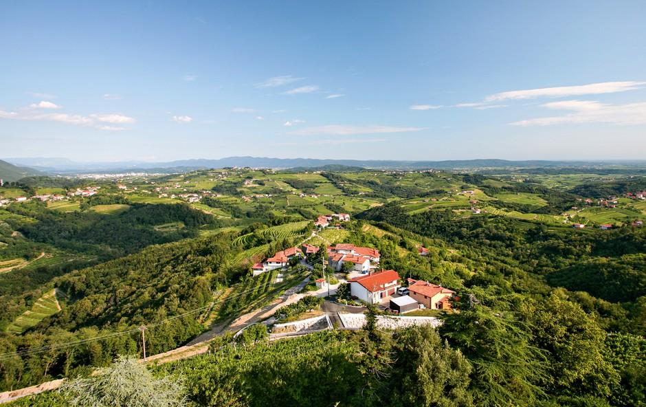 Ideje za izlete: Čez Pohorje, na Martnico, Črno prst in v Brda češnje zobat (foto: Shutterstock)