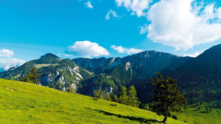 Ideja za izlet: Kriška gora (foto: Shutterstock)