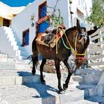 Oia – slikovita vasica na pečini (foto: Shutterstock)