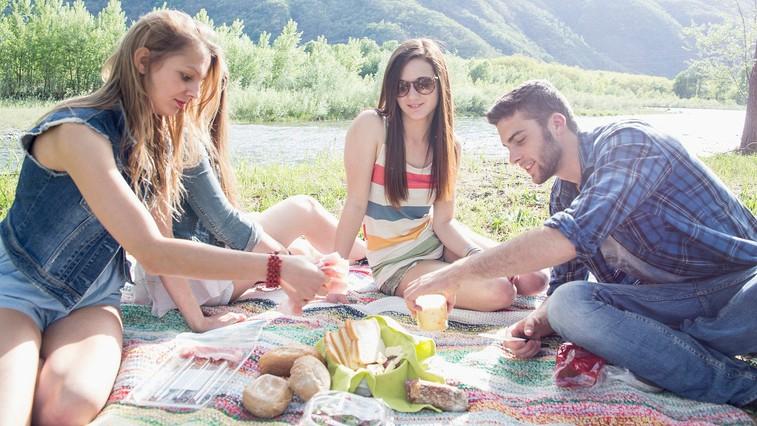 Kako poleti ostanete zdravi, ne da bi se odpovedali piknikom in zabavi? (foto: profimedia)