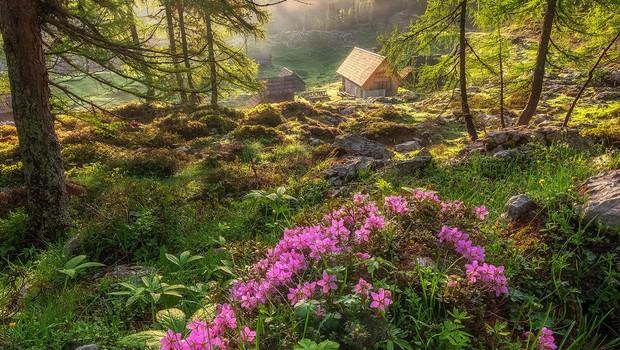Čudovite fotografije: Planina Blato in Dvojno jezero (foto: Aleš Krivec)