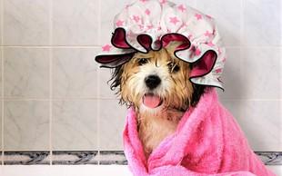 7 trikov, kako še lahko uporabite kapo za prhanje