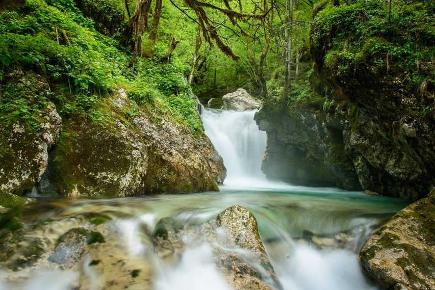 Ideja za izlet: Šunikov vodni gaj