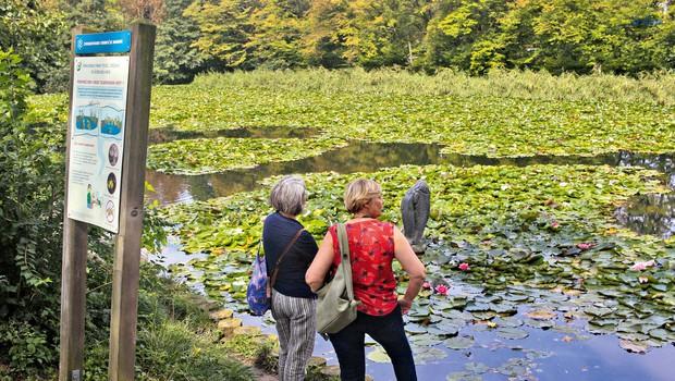 Sprehod čez evropske parke,  ki se zdaj bohotijo v jesenskih barvah (foto: GORAN ANTLEY)