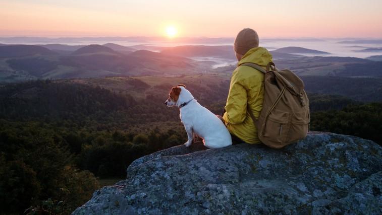 26 pomembnih stvari, ki nas jih lahko nauči narava (foto: Profimedia)