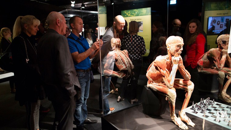 V Ljubljani odprli svetovno razstavo Body Worlds Vital - razstavo pravih človeških teles (foto: Miran Juršič)