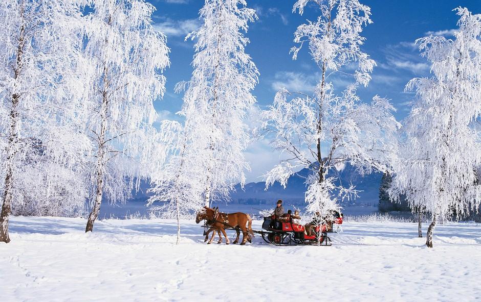 Ideja za vikend izlet: Po zasneženi pokrajini s sanmi s konjsko vprego (foto: Arhiv austria.info)