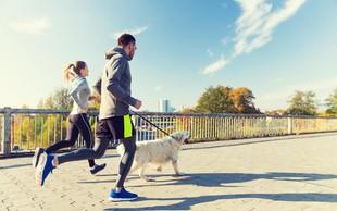 Nasveti za vse, ki se na tek odpravite s psom