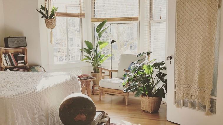 Čiščenje doma (in duše): 24 stvari, ki se jih morate znebiti ta trenutek (foto: Timothy Buck | Unsplash)