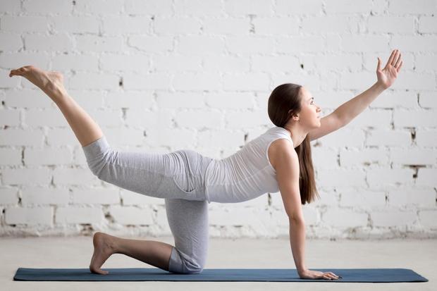 OSLOVSKE BRCE Z vajo utrdite predvsem zadnjico in stegenske mišice. Naredite jo tako: Začnite na vseh štirih in se dobro …