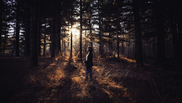 Človeško srce, ki je proč od narave, postane trdo (foto: unsplash)