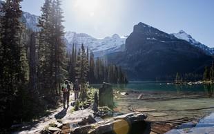 Najboljši razlogi za to, da se odpravite v gore (ste že bili v Alpskem živalskem vrtu?)