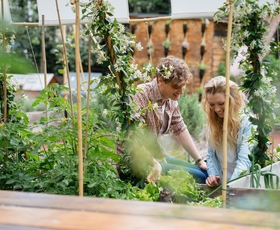 Sadje in zelenjava z domačega vrta sta najboljša