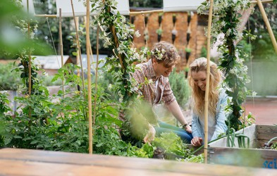 Iščemo ljubitelje urbanega vrtičkanja! Sodelujte in osvojite sanjsko ureditev balkona ali terase!