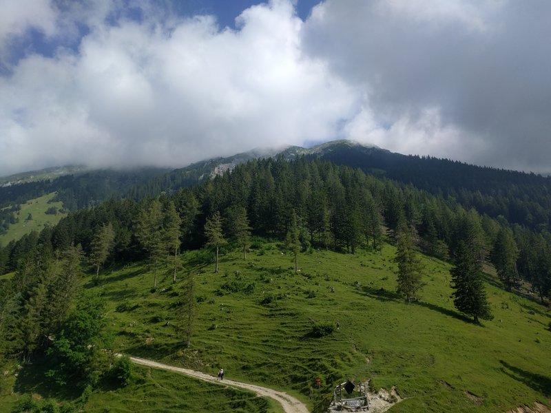 Pot po kateri s planine Prevale nadaljujete do Roblekovega doma.