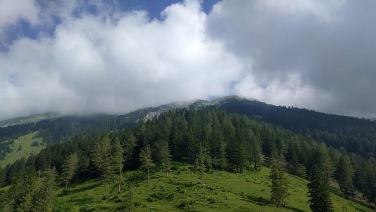 Pot po kateri s planine Prevale nadaljujete do Roblekovega doma. (foto: zasebni arhiv)