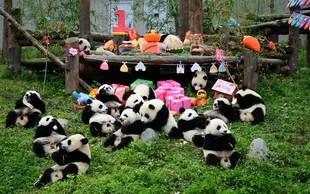 Tole pa je srčkano – rojstnodnevna zabava za pande