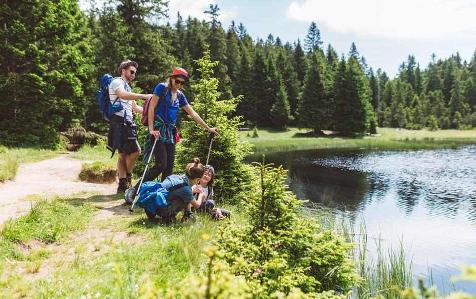 Sanjski oddih za vse ljubitelje narave (foto: Nino Verdnik | RIC Slov. Bistrica)