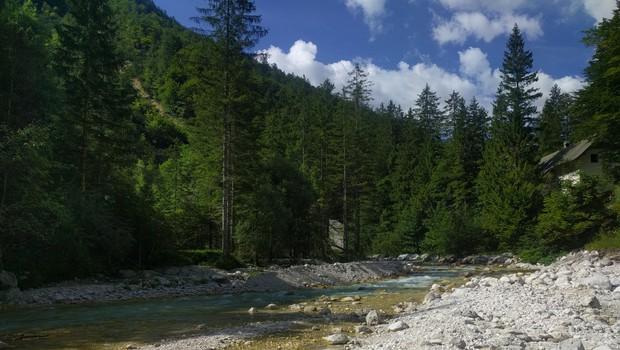 Ideja za lahkoten izlet: sprehod po Mojstrani in Kranjski Gori (foto: zasebni arhiv)