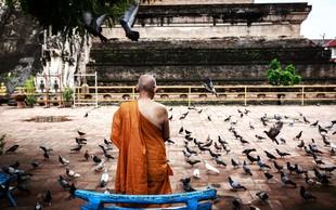 Kako naj bi glede na budizem ravnali s toksičnimi ljudmi