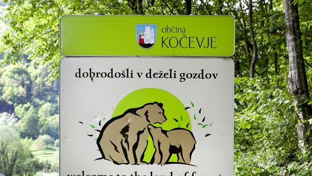 Si upate kolesarit po »Medvedjem Črevu« (foto: profimedia)