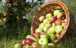 4 pozitivne lastnosti jabolk, ki jih še ne poznate