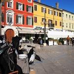 Izlet: Palmanova - mesto v obliki zvezde, za mogočnim zidom, Unescovo zaščito, nagrajeno kavo in obveznim nakupovanjem (foto: DDD)